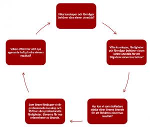 Den cykliska process som Helen Timperley förespråkar för lärares professionsutveckling
